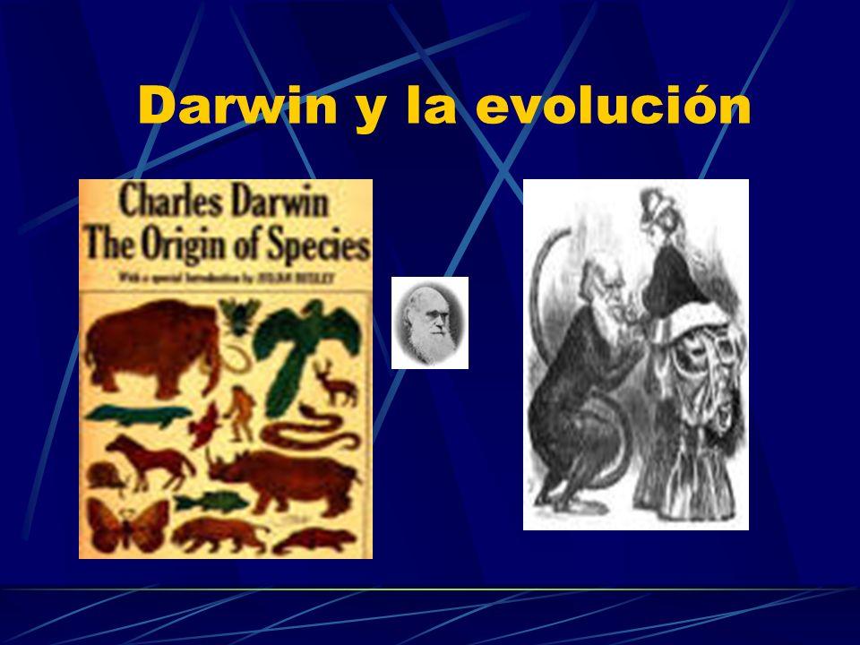 Mutación Cualquier cambio en la secuencia del ADN que es heredable Tipos de mutación: Positivas Evolución Neutras Negativas Enfermedad.
