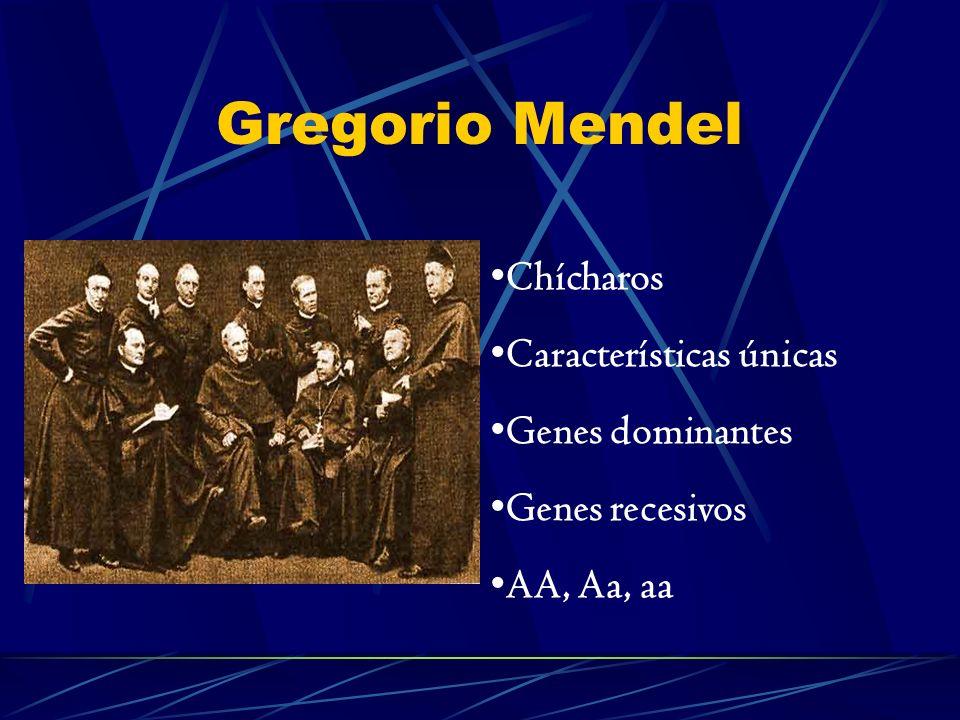 Enfermedades Monogénicas Son aquellas que afectan a un solo gen.
