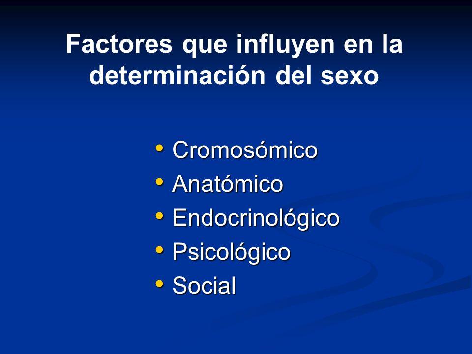 Cromosómico Cromosómico Anatómico Anatómico Endocrinológico Endocrinológico Psicológico Psicológico Social Social Factores que influyen en la determin