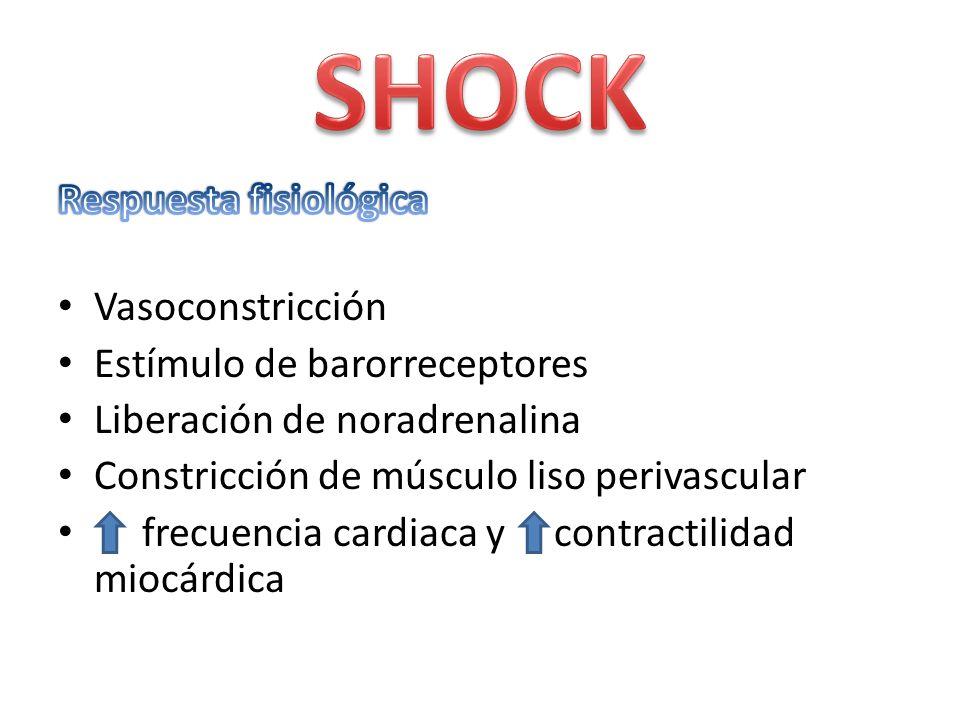 Vasoconstricción Estímulo de barorreceptores Liberación de noradrenalina Constricción de músculo liso perivascular frecuencia cardiaca y contractilida
