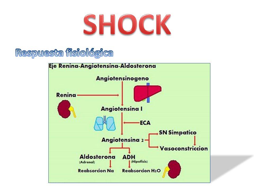 Temperatura >38 ó <36 C FC >90 lpm y TA < 90 mm/hg FR > 20 min Leucocitos >12 000 ó < 4000 Acidosis Oliguria y alteración de la conciencia