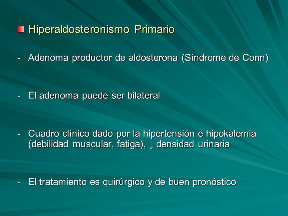 Hiperaldosteronismo Primario - Adenoma productor de aldosterona (Síndrome de Conn) - El adenoma puede ser bilateral - Cuadro clínico dado por la hiper