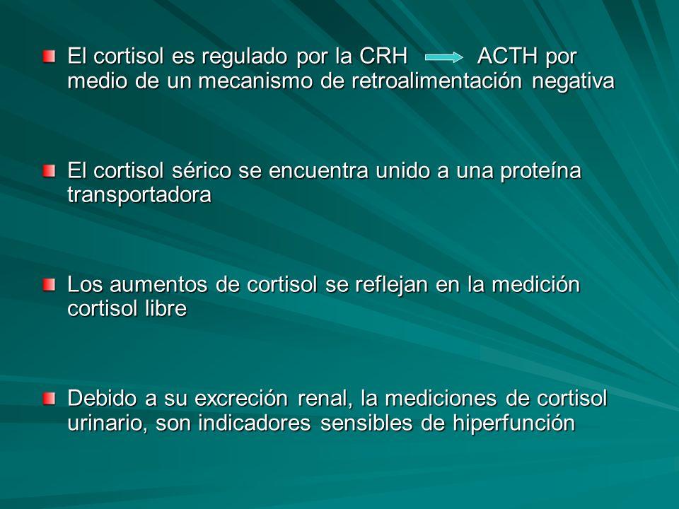 El cortisol es regulado por la CRH ACTH por medio de un mecanismo de retroalimentación negativa El cortisol sérico se encuentra unido a una proteína t