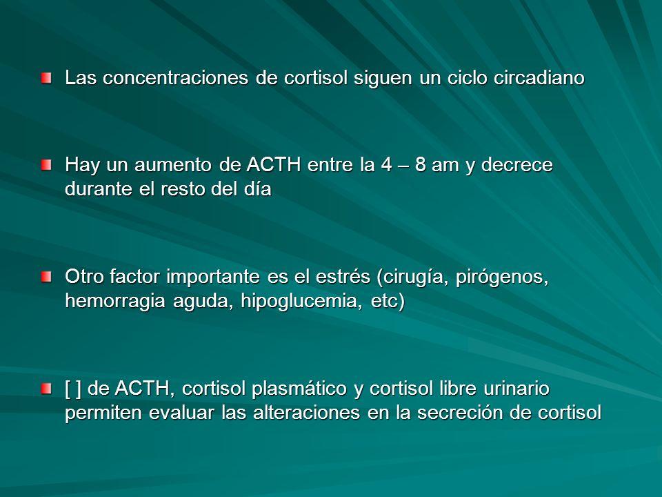 Las concentraciones de cortisol siguen un ciclo circadiano Hay un aumento de ACTH entre la 4 – 8 am y decrece durante el resto del día Otro factor imp