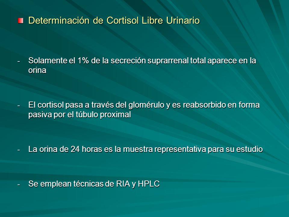 Determinación de Cortisol Libre Urinario - Solamente el 1% de la secreción suprarrenal total aparece en la orina - El cortisol pasa a través del glomé