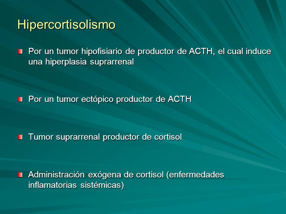 Hipercortisolismo Por un tumor hipofisiario de productor de ACTH, el cual induce una hiperplasia suprarrenal Por un tumor ectópico productor de ACTH T