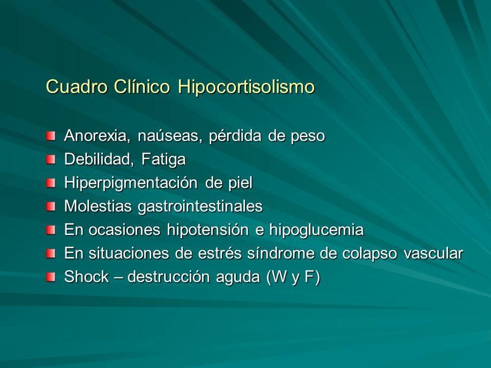 Cuadro Clínico Hipocortisolismo Anorexia, naúseas, pérdida de peso Debilidad, Fatiga Hiperpigmentación de piel Molestias gastrointestinales En ocasion