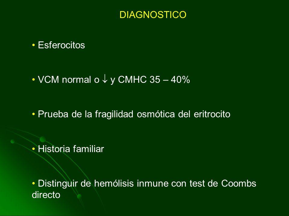 DIAGNOSTICO Esferocitos VCM normal o y CMHC 35 – 40% Prueba de la fragilidad osmótica del eritrocito Historia familiar Distinguir de hemólisis inmune