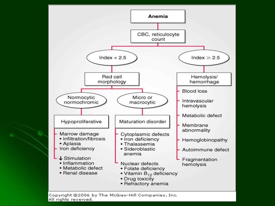 FISIOPATOLOGIA Hemólisis extravascular en IgG (SFM esplénico) Hemólisis extravascular en IgG (SFM esplénico) En IgM es hemólisis intravascular En IgM es hemólisis intravascular Predisposición genética Predisposición genética Desequilibrio en la actividad de linfocitos T (Th1 y Th2) Desequilibrio en la actividad de linfocitos T (Th1 y Th2)