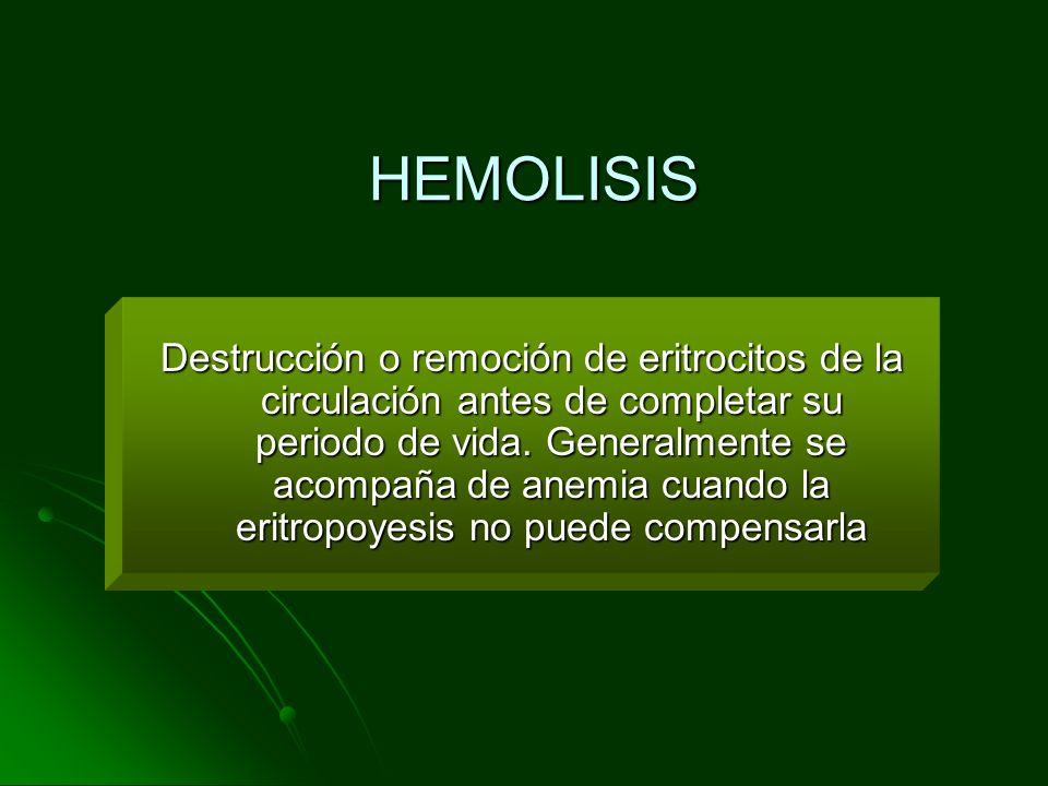 HEMOLISIS Destrucción o remoción de eritrocitos de la circulación antes de completar su periodo de vida. Generalmente se acompaña de anemia cuando la