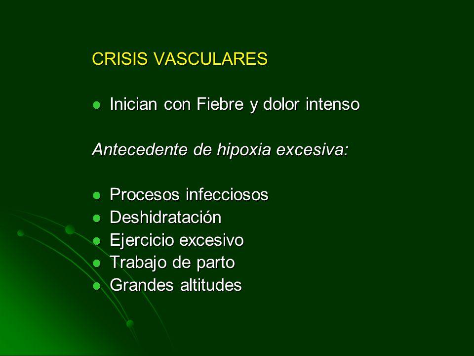 CRISIS VASCULARES Inician con Fiebre y dolor intenso Inician con Fiebre y dolor intenso Antecedente de hipoxia excesiva: Procesos infecciosos Procesos
