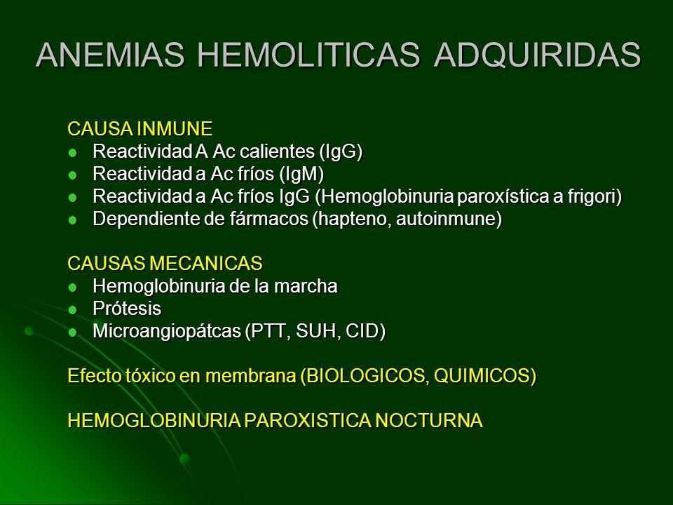ANEMIAS HEMOLITICAS ADQUIRIDAS CAUSA INMUNE Reactividad A Ac calientes (IgG) Reactividad A Ac calientes (IgG) Reactividad a Ac fríos (IgM) Reactividad