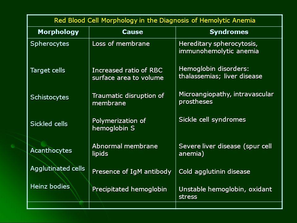MANIFESTACIONES Anemia hemolítica, trombosis venosa, hematopoyesis ineficaz Anemia hemolítica, trombosis venosa, hematopoyesis ineficaz Hemoglobinuria intermitente, Hemosiderinuria presente Hemoglobinuria intermitente, Hemosiderinuria presente Se manifiesta cuando hay activación del complemento (EJ: Infección) Se manifiesta cuando hay activación del complemento (EJ: Infección) Leucopenia y trombocitopenia Leucopenia y trombocitopenia Trombosis en 40% europeos y menos en asiáticos Trombosis en 40% europeos y menos en asiáticos Venas intraabdominales (Sx de Budd Chiari) Venas intraabdominales (Sx de Budd Chiari) Esplenomegalia congestiva Esplenomegalia congestiva También en senos venos cerebrales También en senos venos cerebrales Periodos de aplasia medular y asociación con Sx mielodisplásico Periodos de aplasia medular y asociación con Sx mielodisplásico