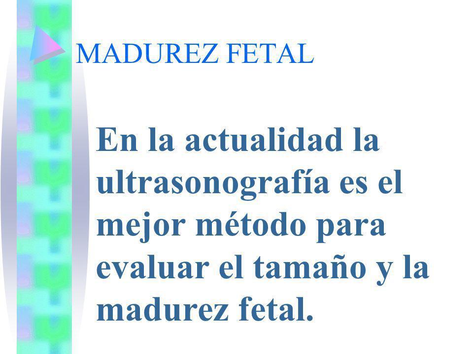 MADUREZ FETAL En la actualidad la ultrasonografía es el mejor método para evaluar el tamaño y la madurez fetal.