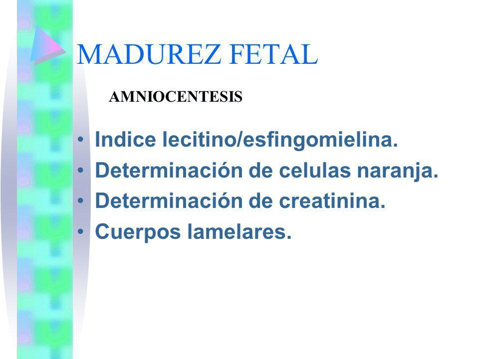 MADUREZ FETAL Indice lecitino/esfingomielina. Determinación de celulas naranja. Determinación de creatinina. Cuerpos lamelares. AMNIOCENTESIS