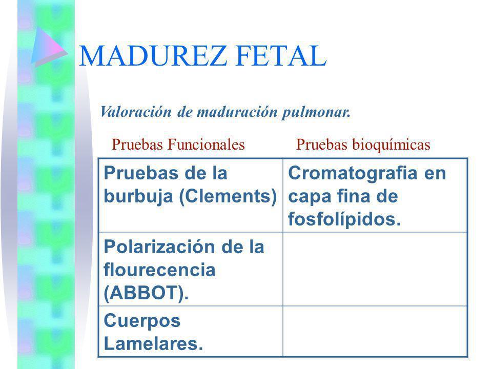 MADUREZ FETAL Valoración de maduración pulmonar. Pruebas de la burbuja (Clements) Cromatografia en capa fina de fosfolípidos. Polarización de la flour