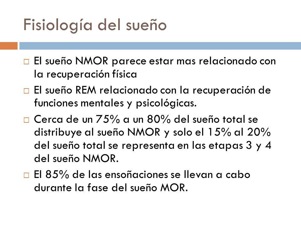 Fisiología del sueño El sueño NMOR parece estar mas relacionado con la recuperación física El sueño REM relacionado con la recuperación de funciones m