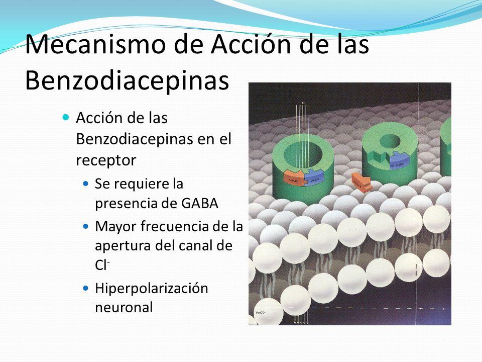Mecanismo de Acción de las Benzodiacepinas Acción de las Benzodiacepinas en el receptor Se requiere la presencia de GABA Mayor frecuencia de la apertu