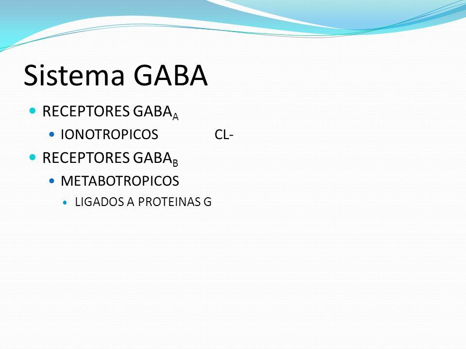 Sistema GABA RECEPTORES GABA A IONOTROPICOSCL- RECEPTORES GABA B METABOTROPICOS LIGADOS A PROTEINAS G