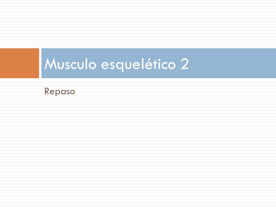 Repaso Musculo esquelético 2
