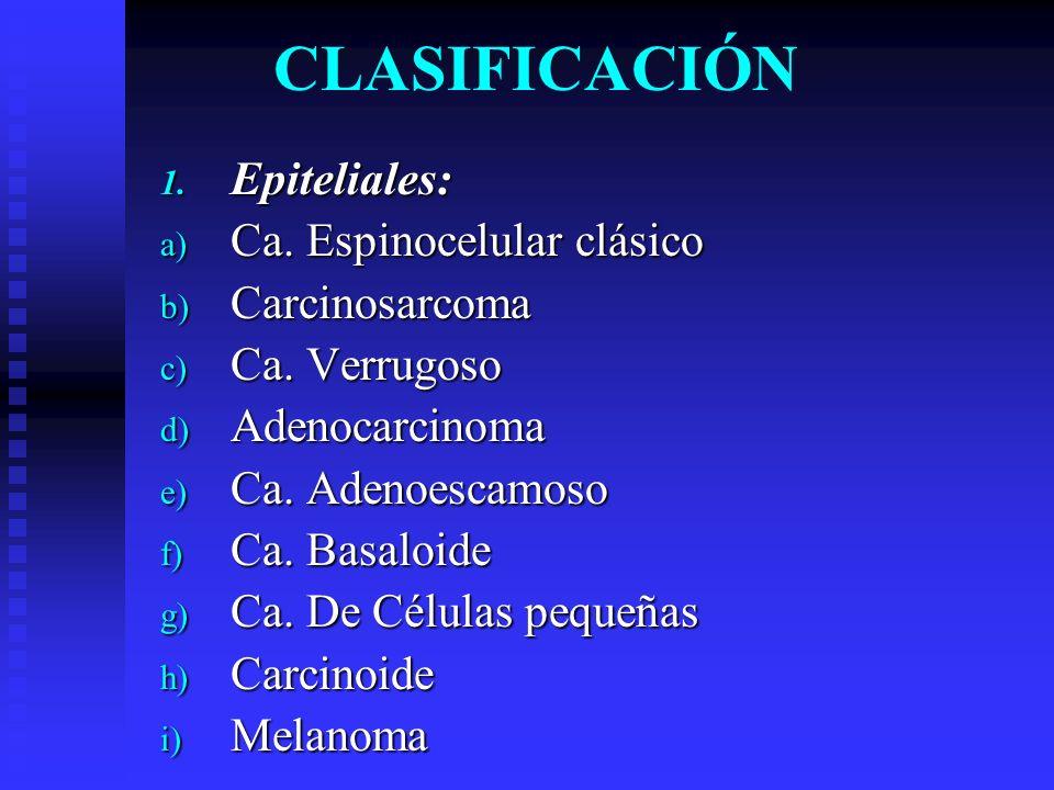 CLASIFICACIÓN 1. Epiteliales: a) Ca. Espinocelular clásico b) Carcinosarcoma c) Ca. Verrugoso d) Adenocarcinoma e) Ca. Adenoescamoso f) Ca. Basaloide