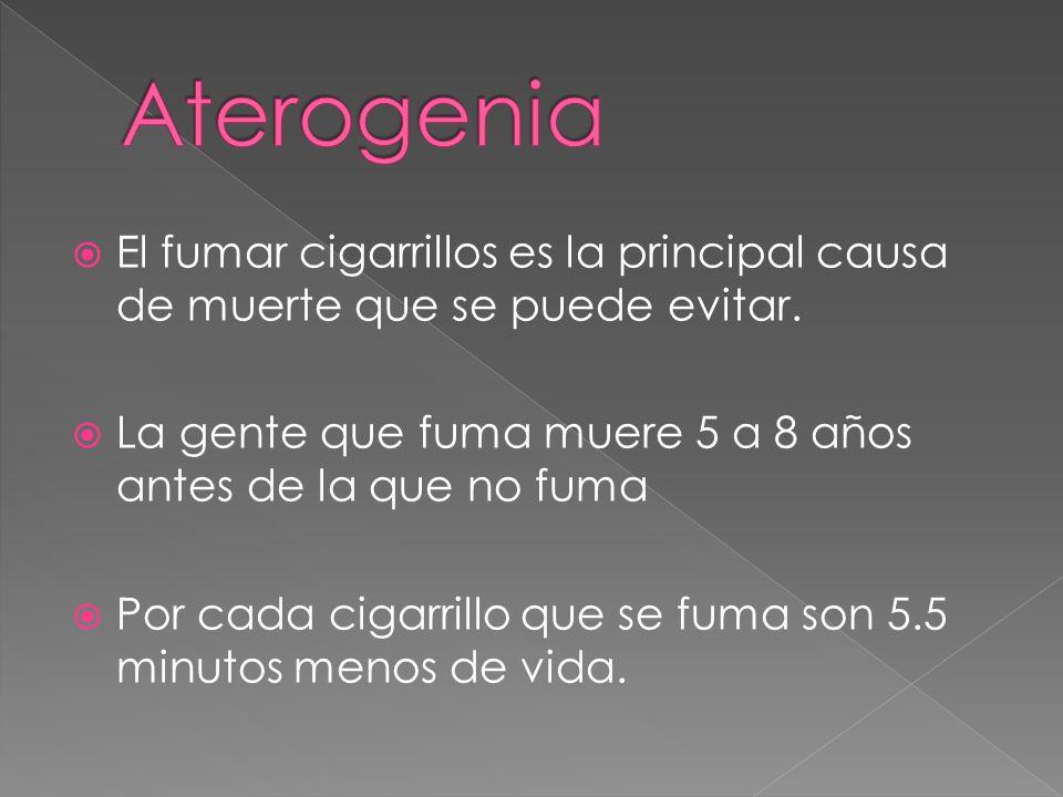 El fumar cigarrillos es la principal causa de muerte que se puede evitar.