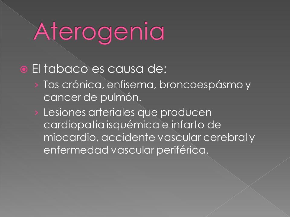 El tabaco es causa de: Tos crónica, enfisema, broncoespásmo y cancer de pulmón.