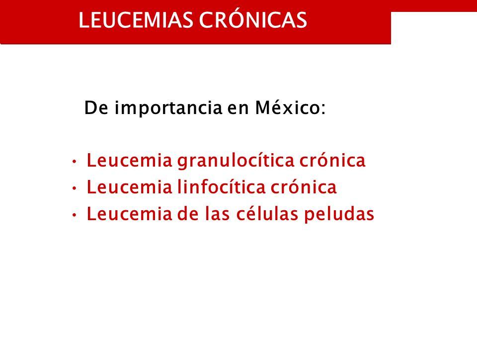 LEUCEMIAS CRÓNICAS De importancia en México: Leucemia granulocítica crónica Leucemia linfocítica crónica Leucemia de las células peludas