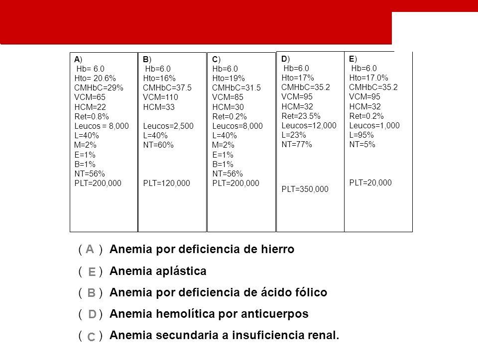 B) Hb=6.0 Hto=16% CMHbC=37.5 VCM=110 HCM=33 Leucos=2,500 L=40% NT=60% PLT=120,000 C) Hb=6.0 Hto=19% CMHbC=31.5 VCM=85 HCM=30 Ret=0.2% Leucos=8,000 L=40% M=2% E=1% B=1% NT=56% PLT=200,000 D) Hb=6.0 Hto=17% CMHbC=35.2 VCM=95 HCM=32 Ret=23.5% Leucos=12,000 L=23% NT=77% PLT=350,000 A) Hb= 6.0 Hto= 20.6% CMHbC=29% VCM=65 HCM=22 Ret=0.8% Leucos = 8,000 L=40% M=2% E=1% B=1% NT=56% PLT=200,000 E) Hb=6.0 Hto=17.0% CMHbC=35.2 VCM=95 HCM=32 Ret=0.2% Leucos=1,000 L=95% NT=5% PLT=20,000 ( ) Anemia por deficiencia de hierro ( ) Anemia aplástica ( ) Anemia por deficiencia de ácido fólico ( ) Anemia hemolítica por anticuerpos ( ) Anemia secundaria a insuficiencia renal.
