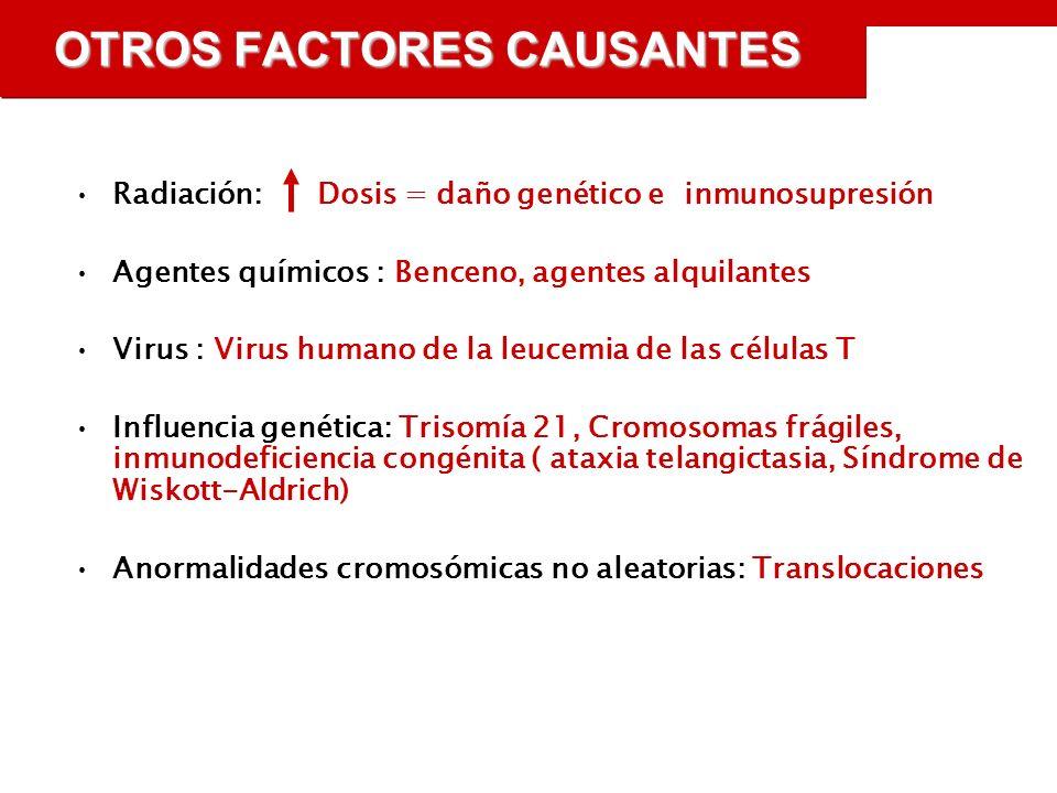 OTROS FACTORES CAUSANTES Radiación: Dosis = daño genético e inmunosupresión Agentes químicos : Benceno, agentes alquilantes Virus : Virus humano de la leucemia de las células T Influencia genética: Trisomía 21, Cromosomas frágiles, inmunodeficiencia congénita ( ataxia telangictasia, Síndrome de Wiskott-Aldrich) Anormalidades cromosómicas no aleatorias: Translocaciones