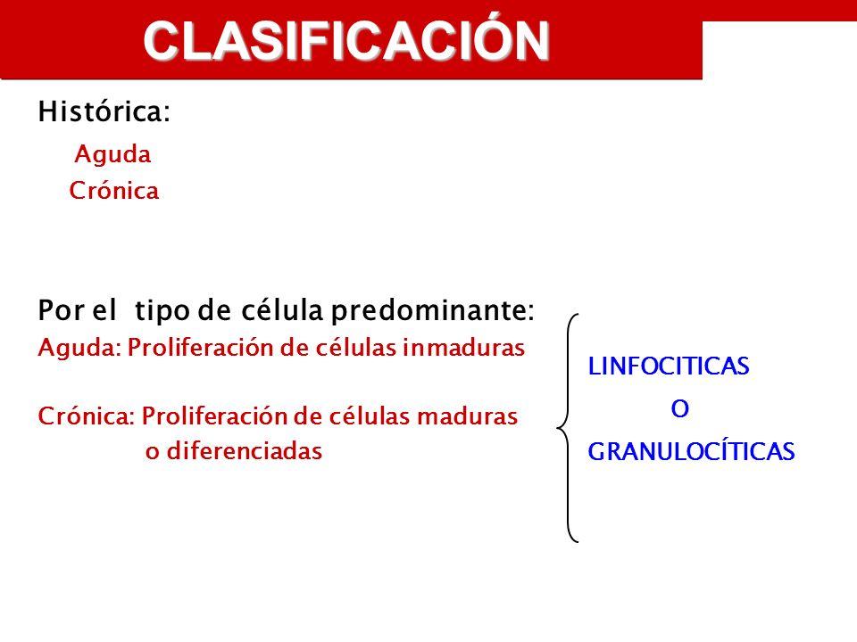 CLASIFICACIÓN Histórica: Aguda Crónica Por el tipo de célula predominante: Aguda: Proliferación de células inmaduras Crónica: Proliferación de células maduras o diferenciadas LINFOCITICAS O GRANULOCÍTICAS