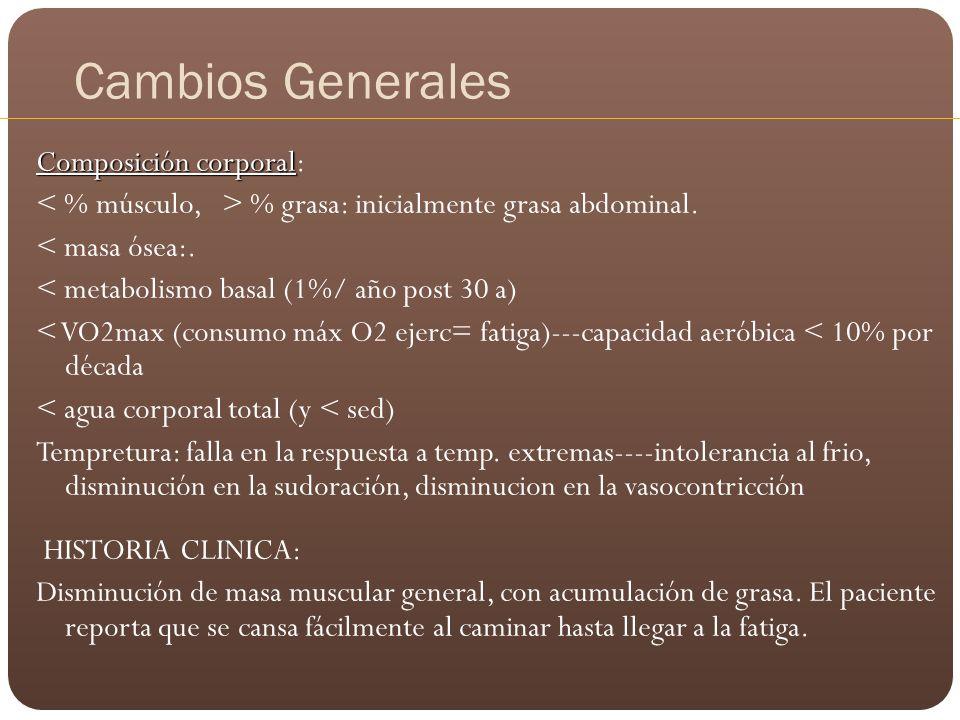 Cambios Generales Composición corporal Composición corporal: % grasa: inicialmente grasa abdominal. < masa ósea:. < metabolismo basal (1%/ año post 30