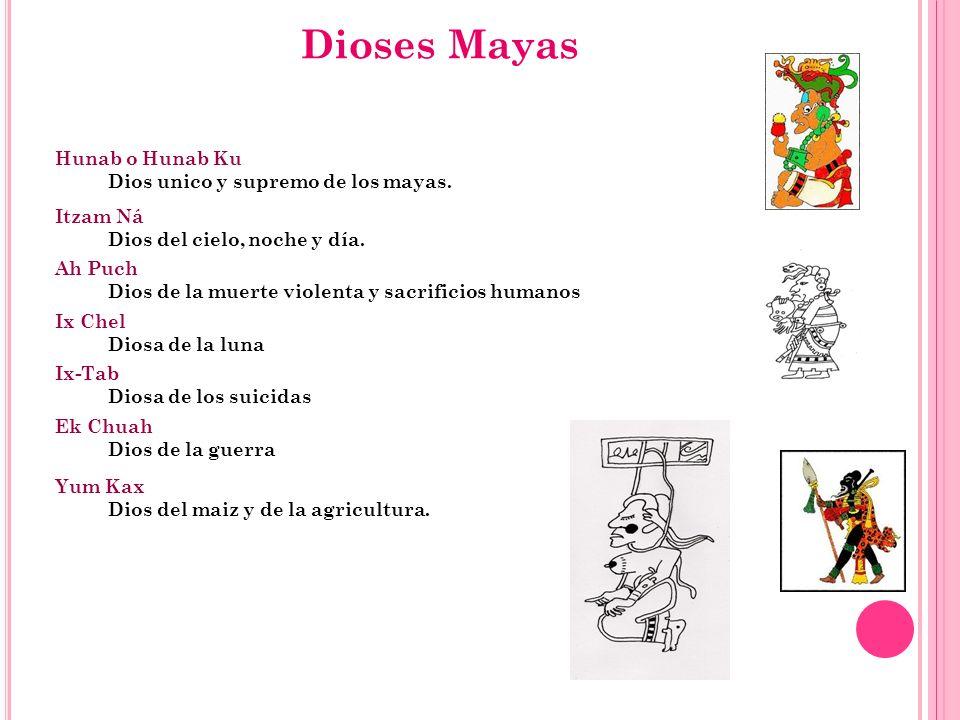 Dioses Mayas Itzam Ná Dios del cielo, noche y día. Hunab o Hunab Ku Dios unico y supremo de los mayas. Ix Chel Diosa de la luna Ix-Tab Diosa de los su