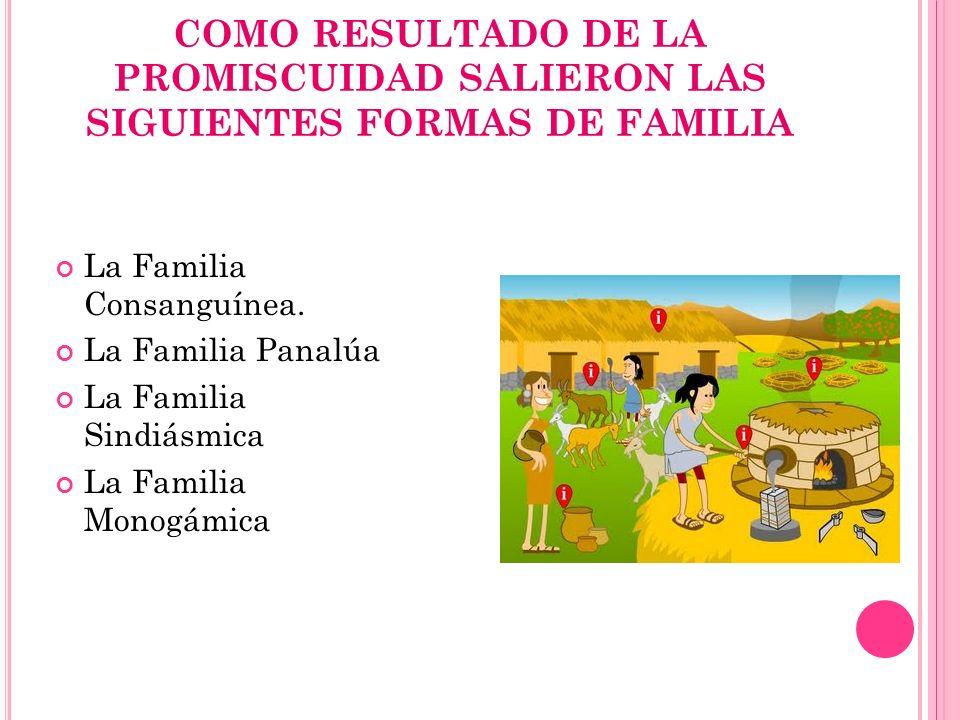 COMO RESULTADO DE LA PROMISCUIDAD SALIERON LAS SIGUIENTES FORMAS DE FAMILIA La Familia Consanguínea. La Familia Panalúa La Familia Sindiásmica La Fami