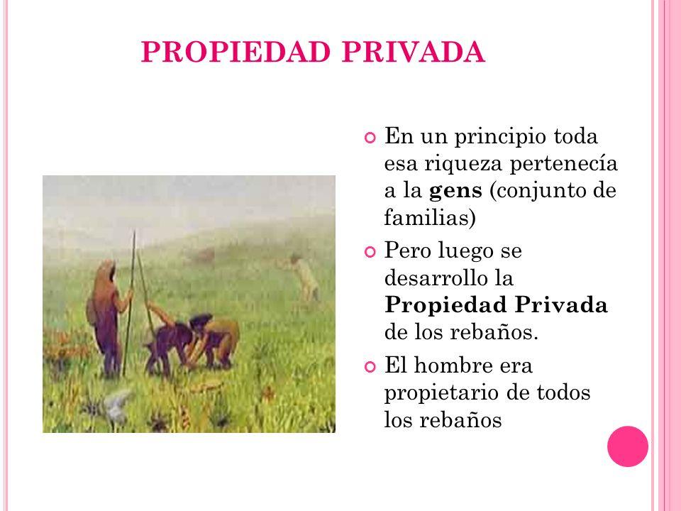 PROPIEDAD PRIVADA En un principio toda esa riqueza pertenecía a la gens (conjunto de familias) Pero luego se desarrollo la Propiedad Privada de los re