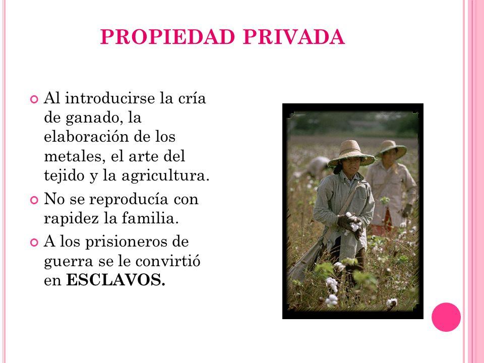 PROPIEDAD PRIVADA Al introducirse la cría de ganado, la elaboración de los metales, el arte del tejido y la agricultura. No se reproducía con rapidez