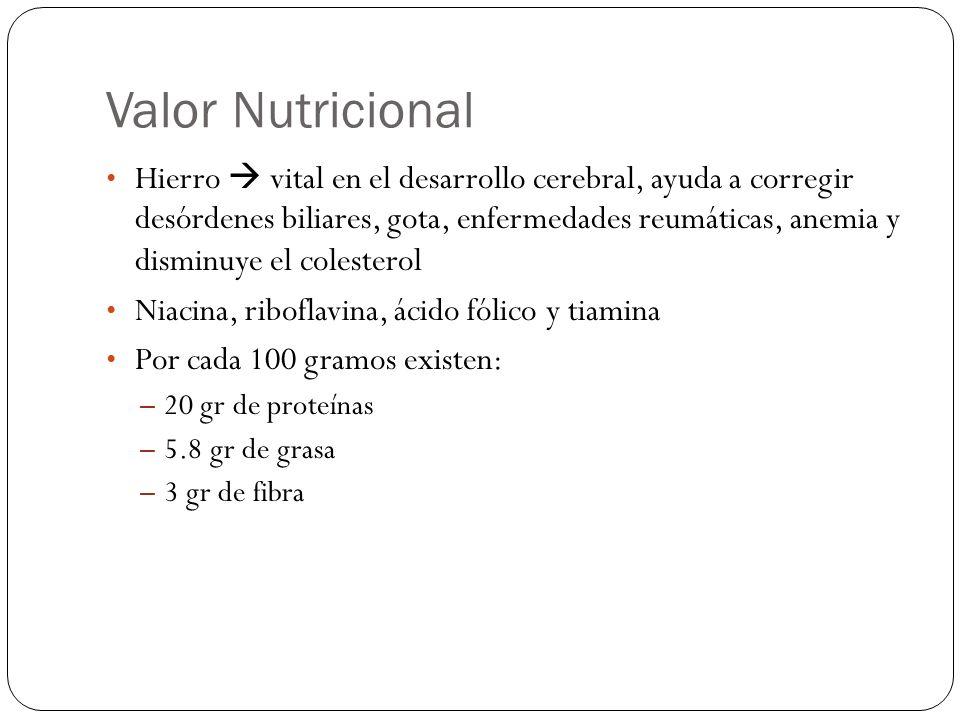 Valor Nutricional Hierro vital en el desarrollo cerebral, ayuda a corregir desórdenes biliares, gota, enfermedades reumáticas, anemia y disminuye el c