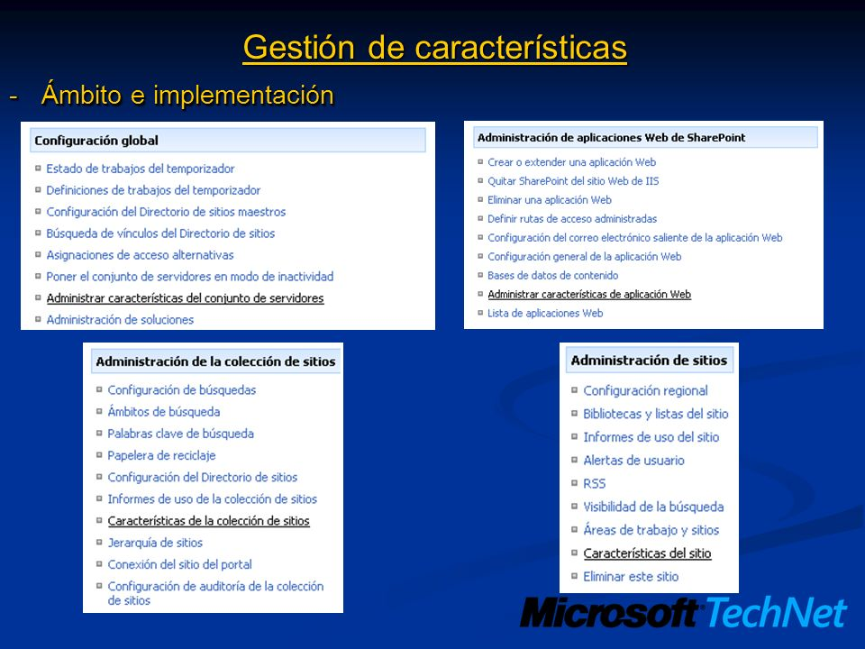 Gestión de características -Ámbito e implementación