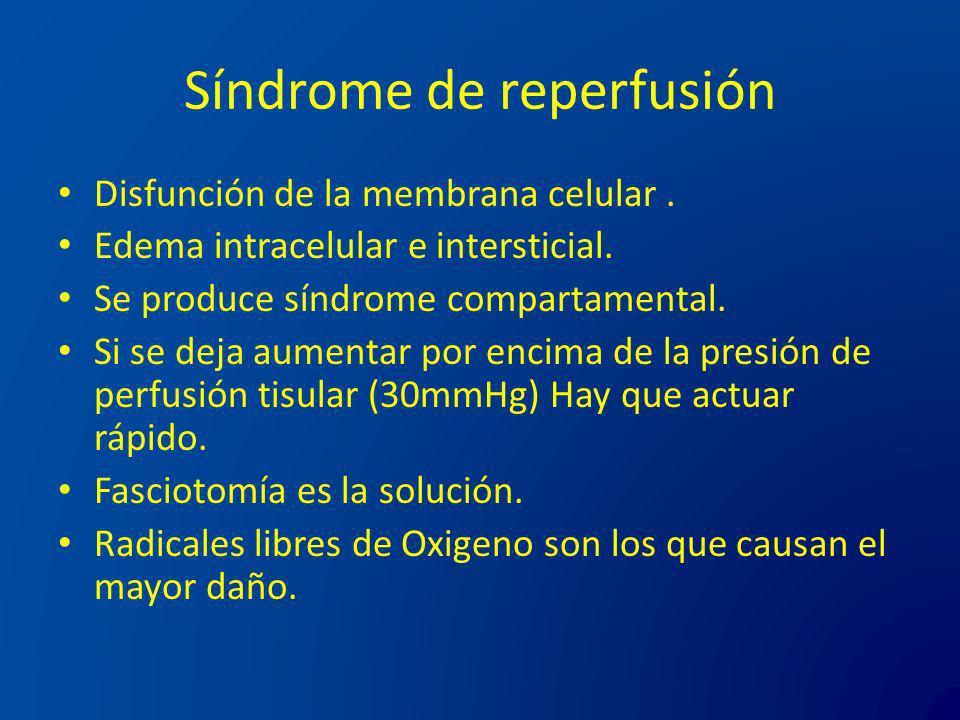 Síndrome de reperfusión Disfunción de la membrana celular. Edema intracelular e intersticial. Se produce síndrome compartamental. Si se deja aumentar