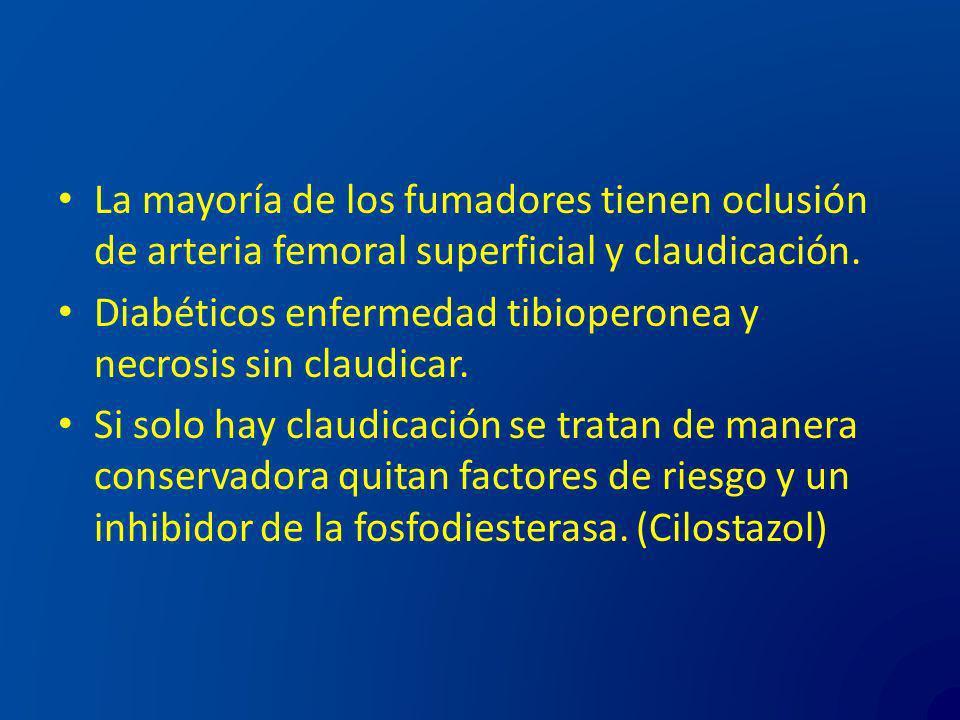 La mayoría de los fumadores tienen oclusión de arteria femoral superficial y claudicación. Diabéticos enfermedad tibioperonea y necrosis sin claudicar
