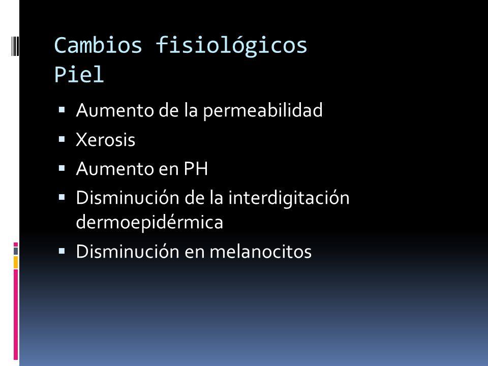 Cambios fisiológicos Piel Aumento de la permeabilidad Xerosis Aumento en PH Disminución de la interdigitación dermoepidérmica Disminución en melanocit