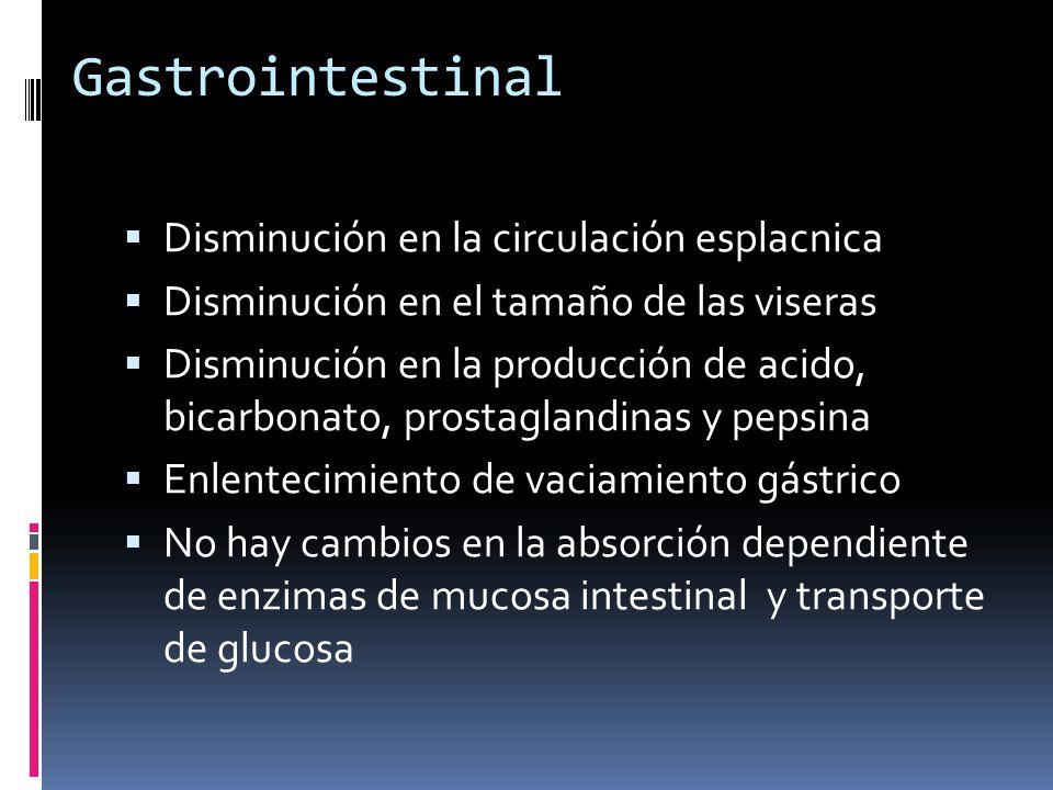 Gastrointestinal Disminución en la circulación esplacnica Disminución en el tamaño de las viseras Disminución en la producción de acido, bicarbonato,