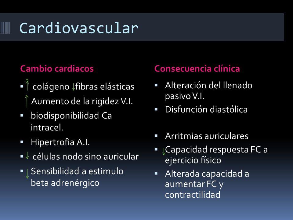 Cardiovascular Cambio cardiacosConsecuencia clínica colágeno fibras elásticas Aumento de la rigidez V.I. biodisponibilidad Ca intracel. Hipertrofia A.