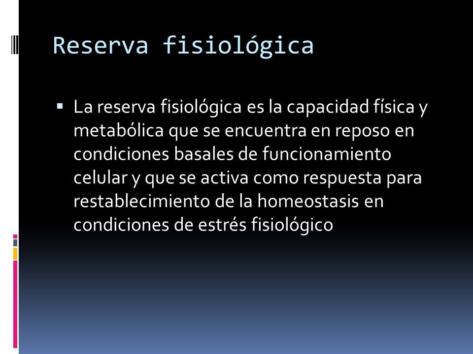 Reserva fisiológica Esta reserva es indispensable para la supervivencia del individuo y de la especie Dependiente de nutrición, estado de salud, actividad física función mitocondrial y ahorro energético