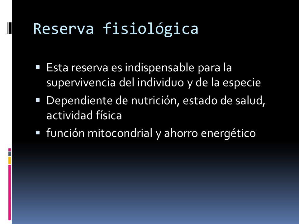 Reserva fisiológica Esta reserva es indispensable para la supervivencia del individuo y de la especie Dependiente de nutrición, estado de salud, activ