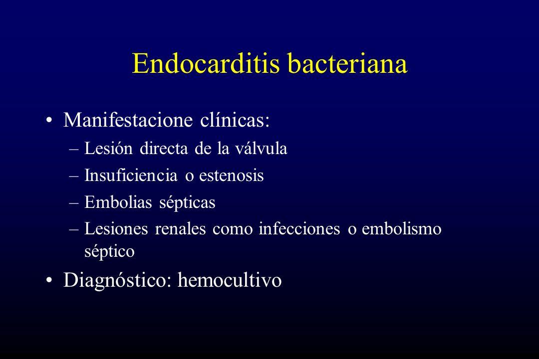 Endocarditis bacteriana Manifestacione clínicas: –Lesión directa de la válvula –Insuficiencia o estenosis –Embolias sépticas –Lesiones renales como infecciones o embolismo séptico Diagnóstico: hemocultivo