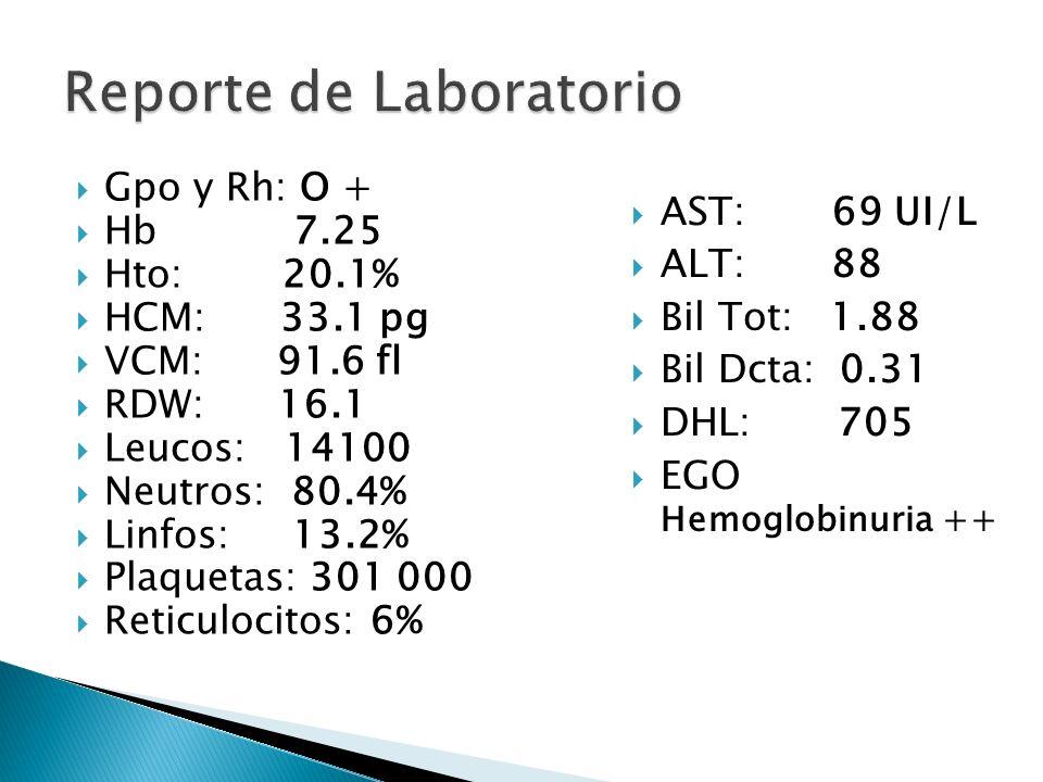 Gpo y Rh: O + Hb 7.25 Hto: 20.1% HCM: 33.1 pg VCM: 91.6 fl RDW: 16.1 Leucos: 14100 Neutros: 80.4% Linfos: 13.2% Plaquetas: 301 000 Reticulocitos: 6% A