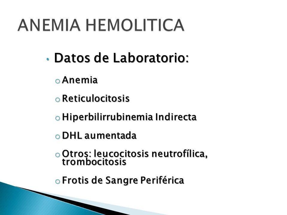 Datos de Laboratorio: Datos de Laboratorio: o Anemia o Reticulocitosis o Hiperbilirrubinemia Indirecta o DHL aumentada o Otros: leucocitosis neutrofíl