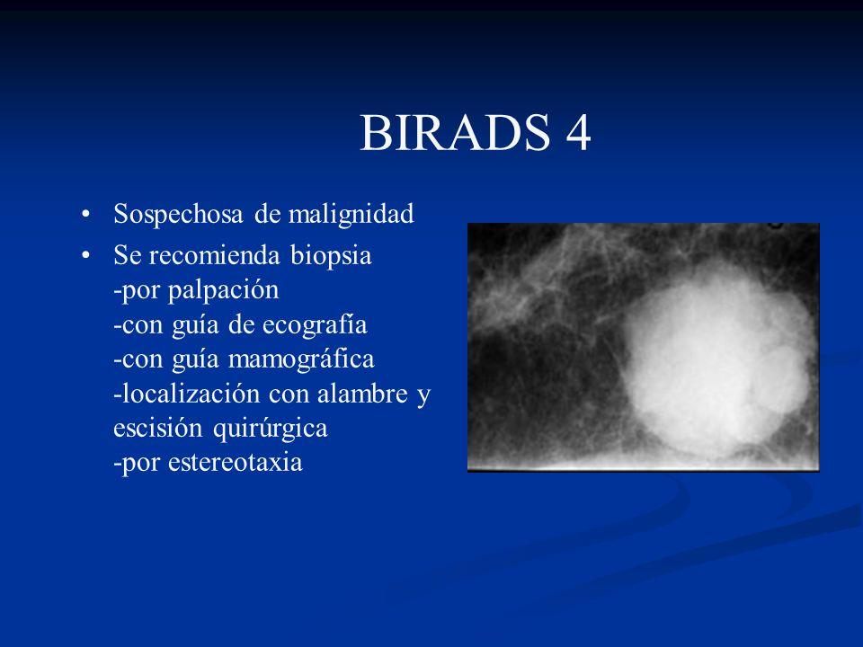 BIRADS 3 Probablemente benigna Probabilidad estadística de cáncer < 2% Seguimiento a intervalo corto de 6 meses