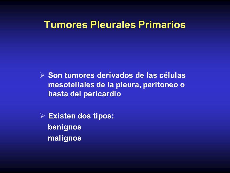 Tumores Pleurales Primarios Son tumores derivados de las células mesoteliales de la pleura, peritoneo o hasta del pericardio Existen dos tipos: benign